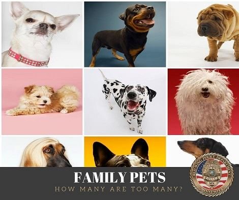"Collage of dog photos above the words ""Family Pets - How Many is Too Many?"" and the RWPD seal"