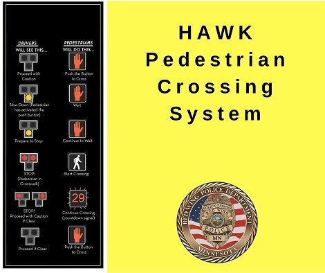 "Infographic of HAWK traffic system with the words ""HAWK Pedestrian Crossing System"" and the RW"