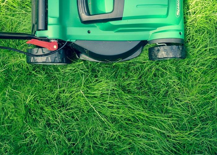 Close-up image of a green lawnmower in bright green grass.
