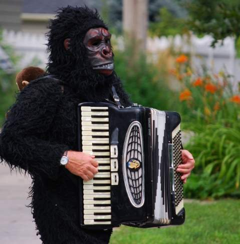 Person in Gorilla Costume Playing Instrument